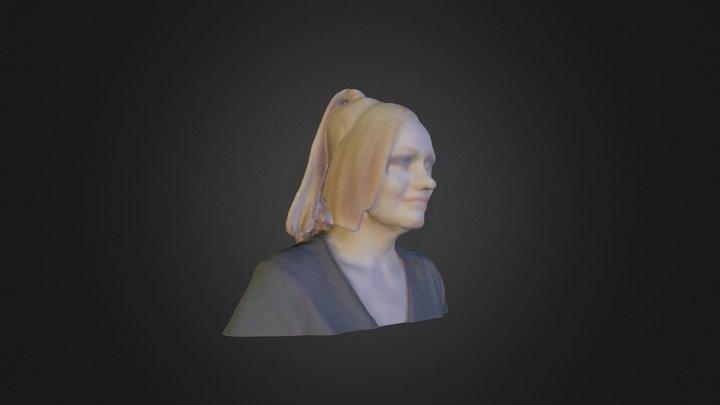 Anja Hairs 3D Model