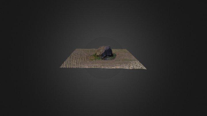 Erratic rock in a corn field 3D Model