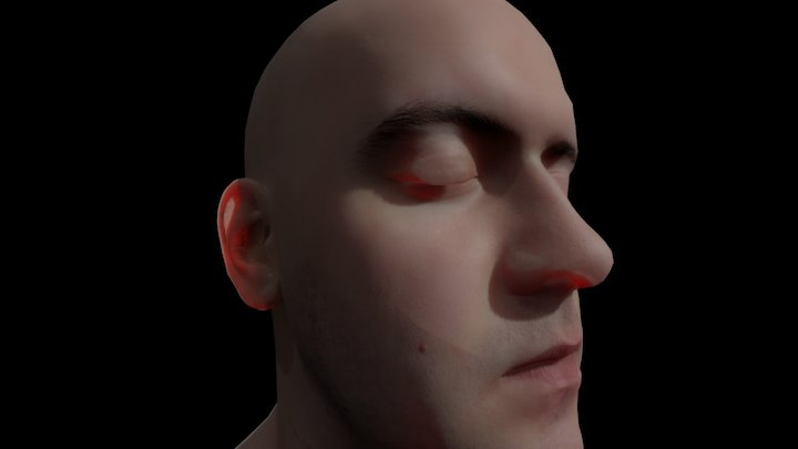 Head (Lee Perry Smith) 3D Model