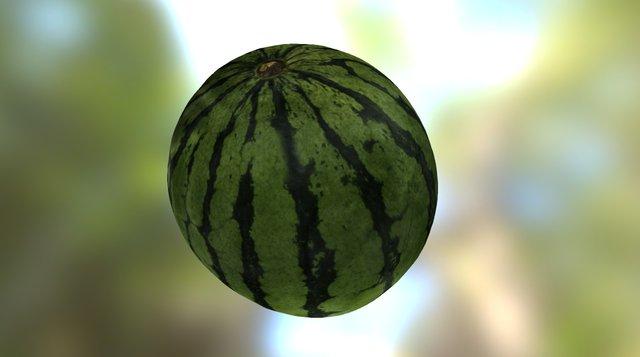 The Watermelon-2 3D Model