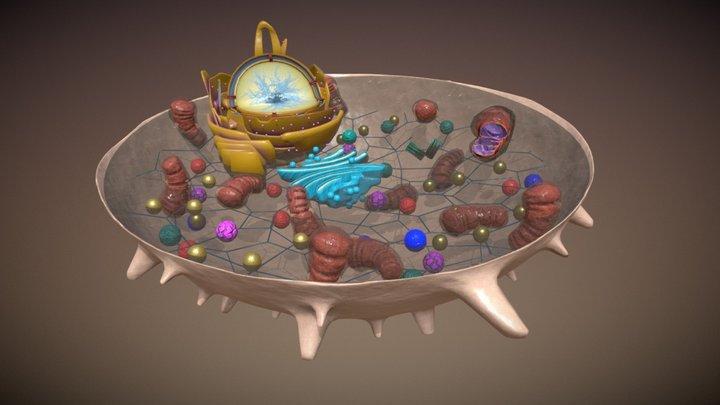 Biology animal Cell 3D Model