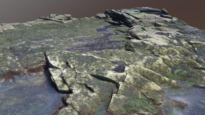 Intertidal Shore @ Chamberlain, ME 3D Model