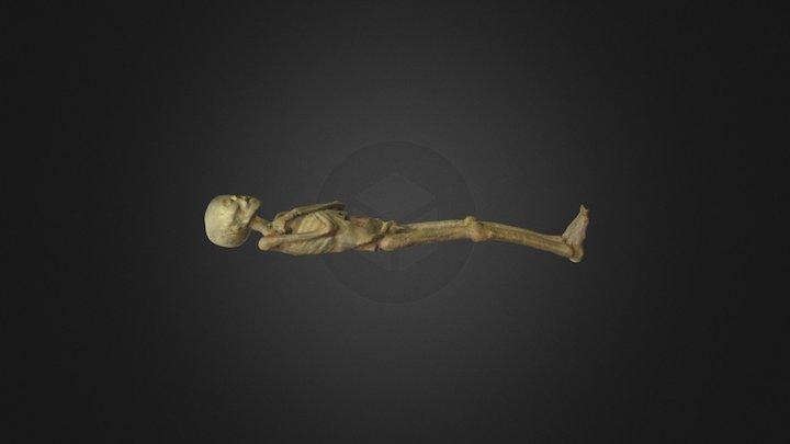 Vanem poiss 3D Model