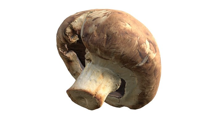 Crimini Mushroom (2/2) 3D Model