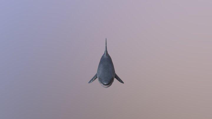 Shark Rig 3D Model
