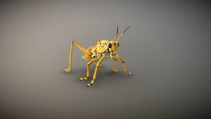 Lubber Grasshopper 3D Model