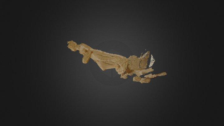 san giacomo statua 1 densa ap 3D Model