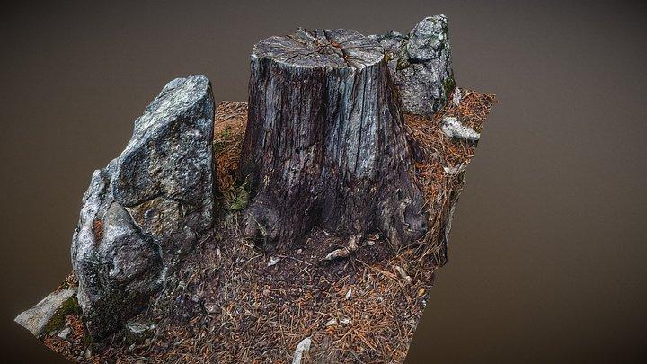 Stump 4 3D Model