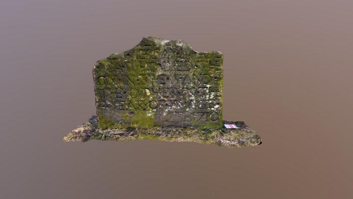 Govan Graveyard 313 3D Model