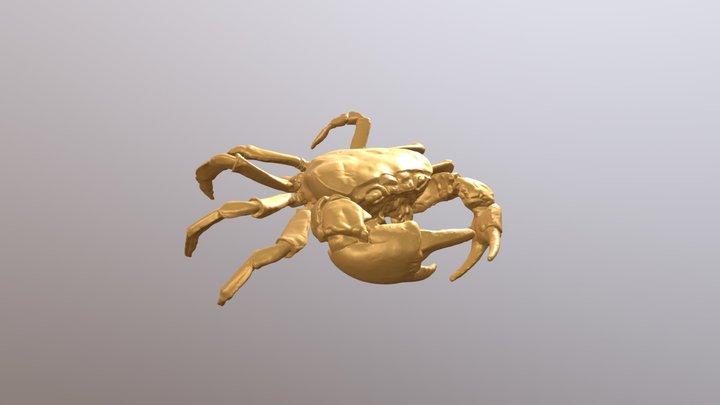 Cancro 3D Model