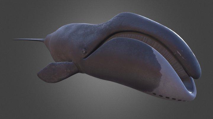 Bowhead Whale 3D Model