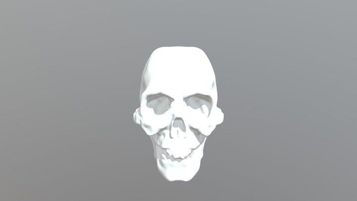 Skull, iteration #1 3D Model