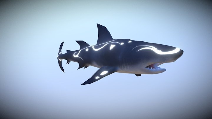 Pamuya - Shark 3D Model