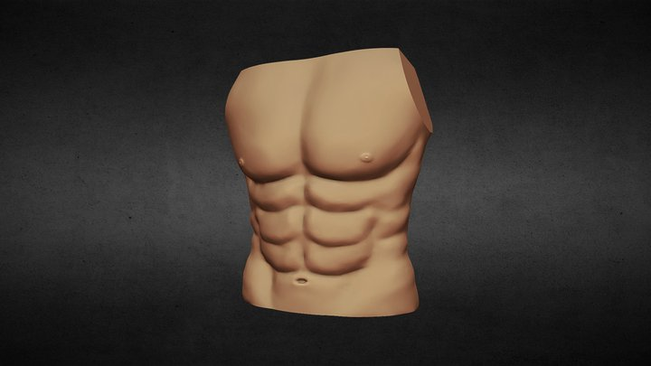 Day 03 - Body : Chest 3D Model