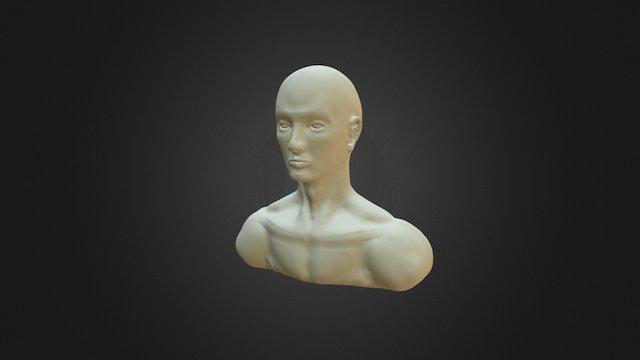 1115 3D Model