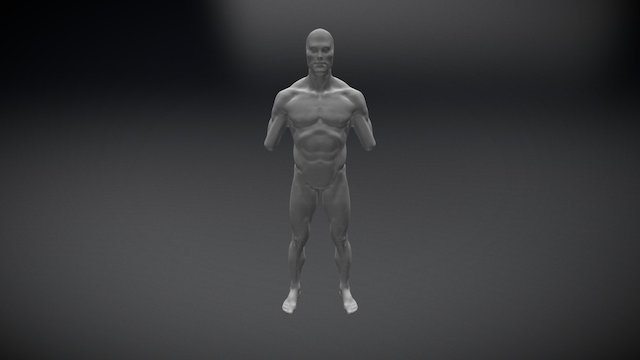 02 male anatomy study 3D Model