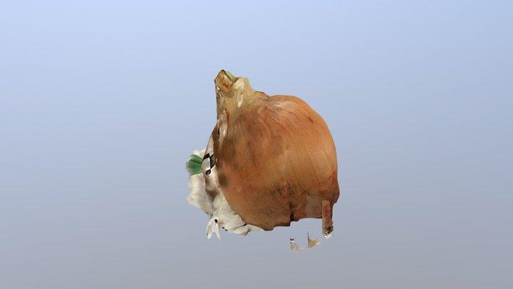 Onion 3D Model