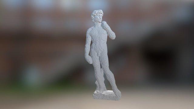 VOXEL - David - Michelangelo 3D Model