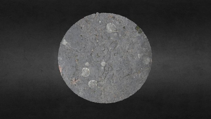 Gabriola Island Petroglyph #3