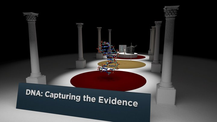 DNA: Capturing the Evidence 3D Model