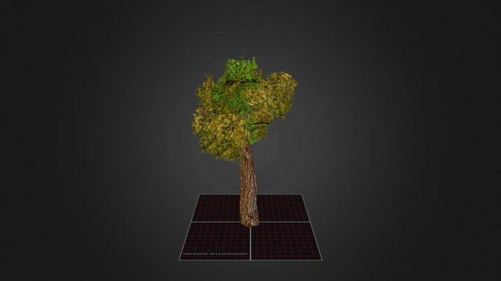 Prop_Tree 3D Model