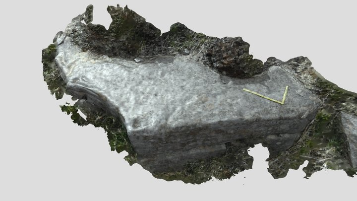 TEE001A scan 3D Model