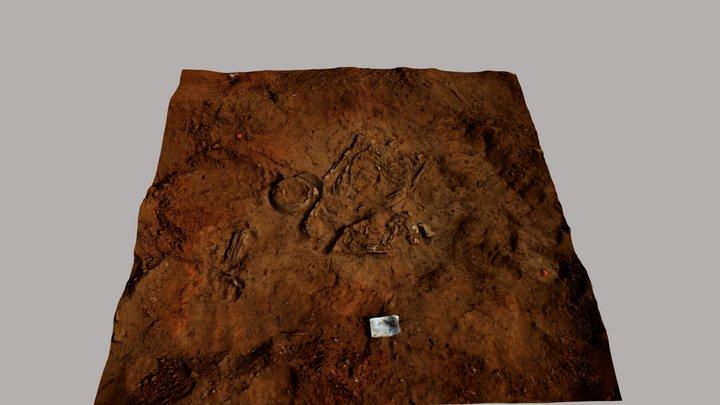 Project Bonaire, Amboina spoor 19 skelet en kom 3D Model
