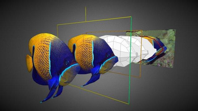 3D1-W05-Fish(Side-Modeling) 3D Model