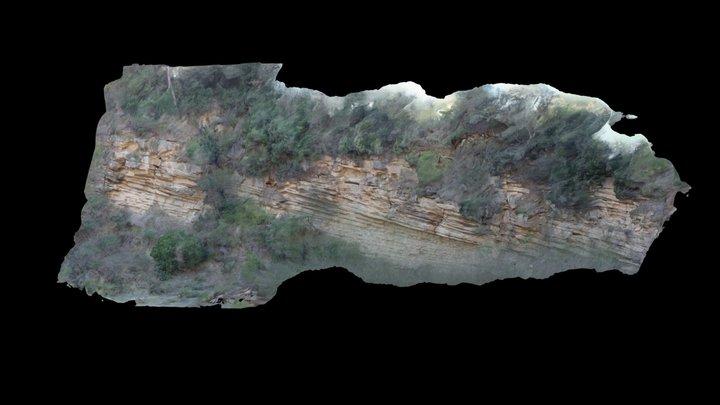 Delta front deposits 3D Model