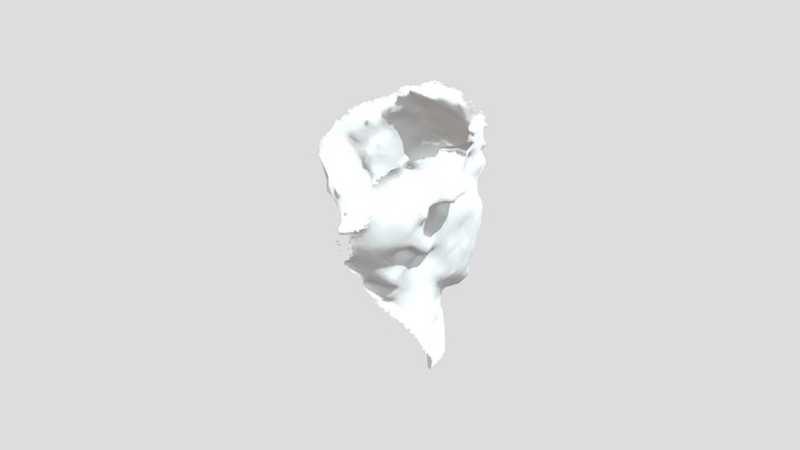 Head_test01 3D Model