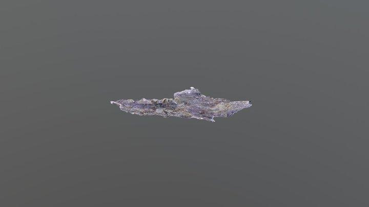 Utahraptor Block 5 30 2018 3D Model