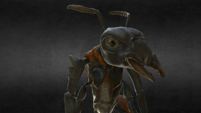 Ant Character (Idle Animation) 3D Model