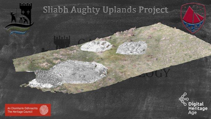 Booley Huts - Kilnagappagh (Drone Survey) 3D Model