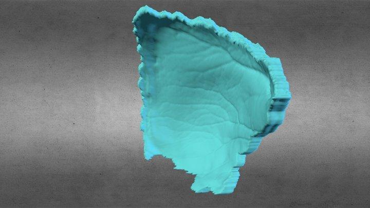 eefoPe1f 3D Model