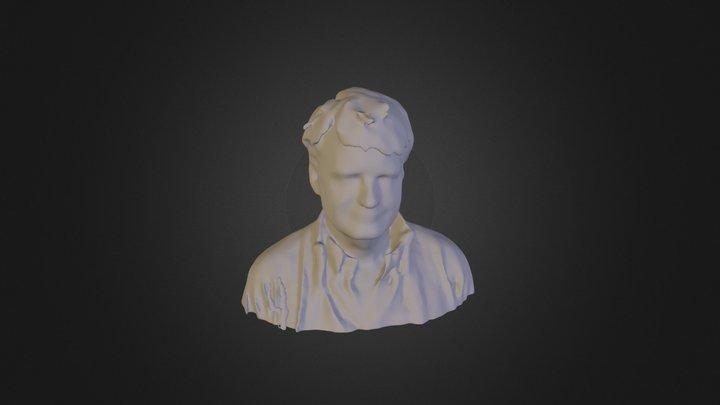 model_mesh 3D Model