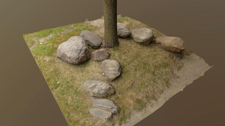TREE BASE & ROCKS 3D Model