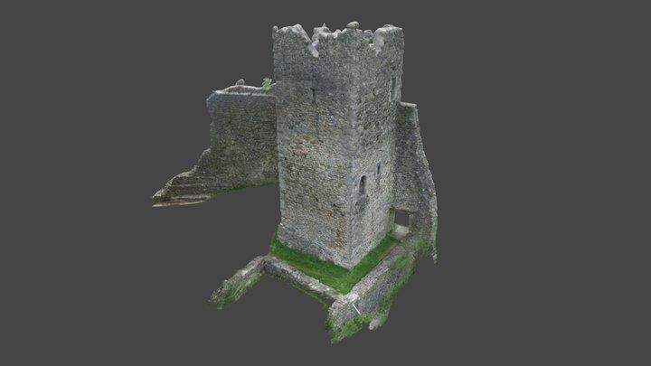 Ruine Ramschwag 3D Model