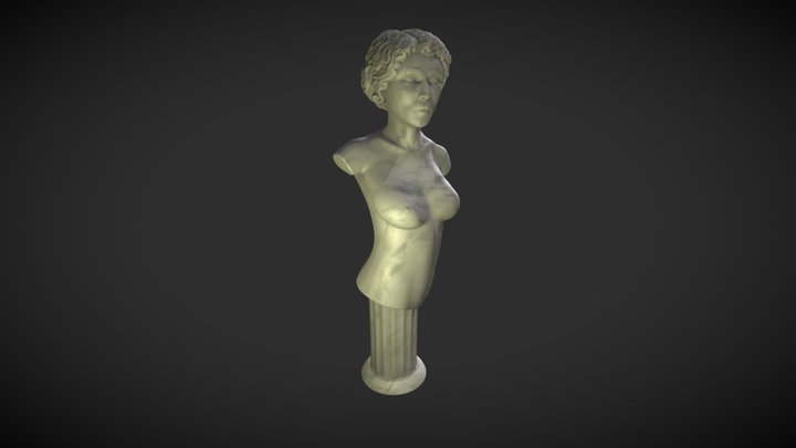 female bust 3D Model