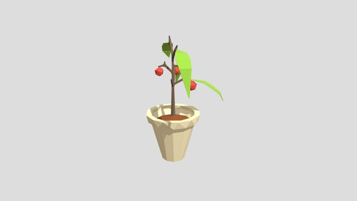 Plant lowpoly 3D Model