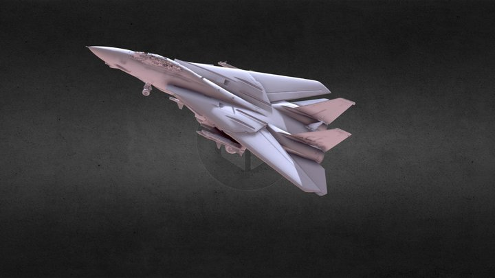 F 14 model 3D Model