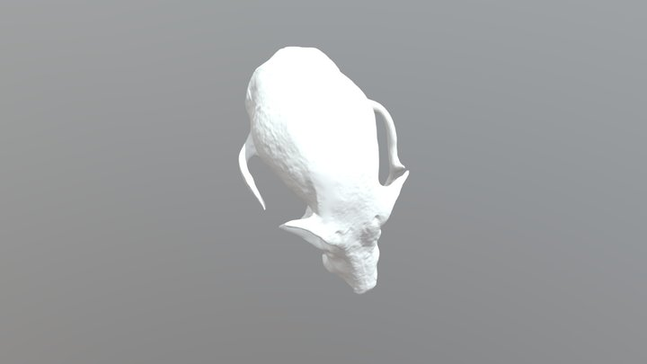 Flying Fox Skull Low 3D Model