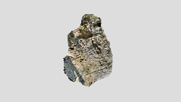 Rocky Wall 3D Model