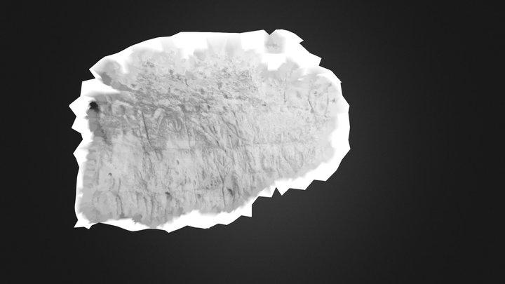 ECh_mix2_poisson-color 3D Model
