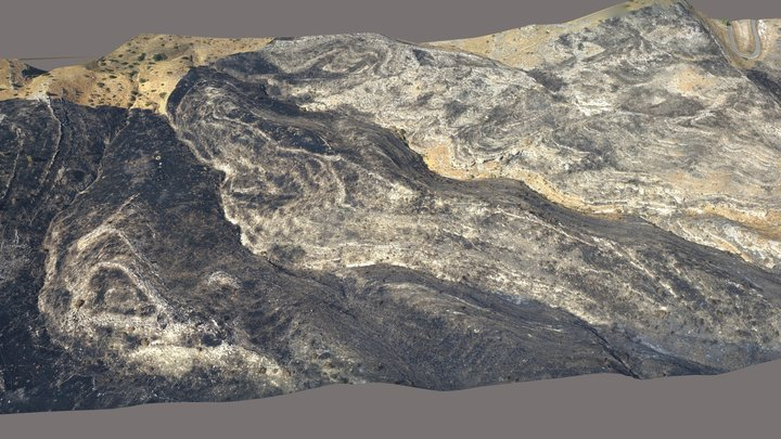 Sussita South after a Fire 3D Model