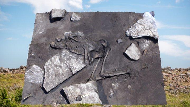 Sandby borg skeleton 3D Model