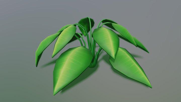 Plant Model 3D Model