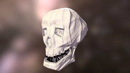 The Skull 3D Model