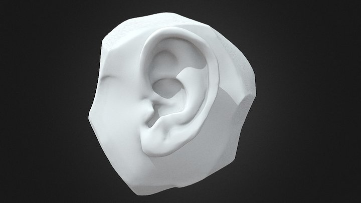 Ear Sculpt 3D Model