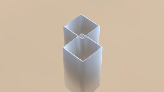 Double Illusion 3D Model