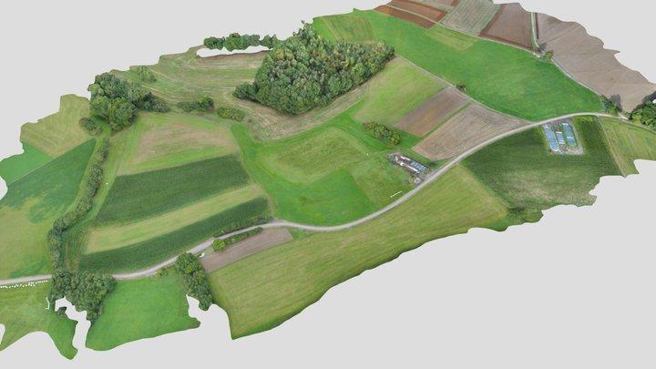 Rödensdorf / Biodiversität SUSALPS - by WWL 3D Model